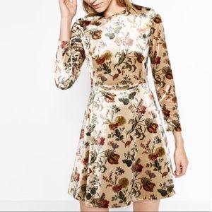 Zara Velvet Long Sleeve Floral Mini Dress